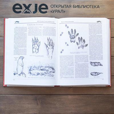 Следы зверей и птиц. Энциклопедический справочник-определитель