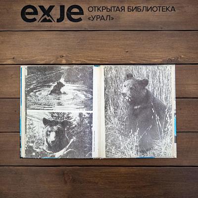 Книга самый красивый Урал скачать
